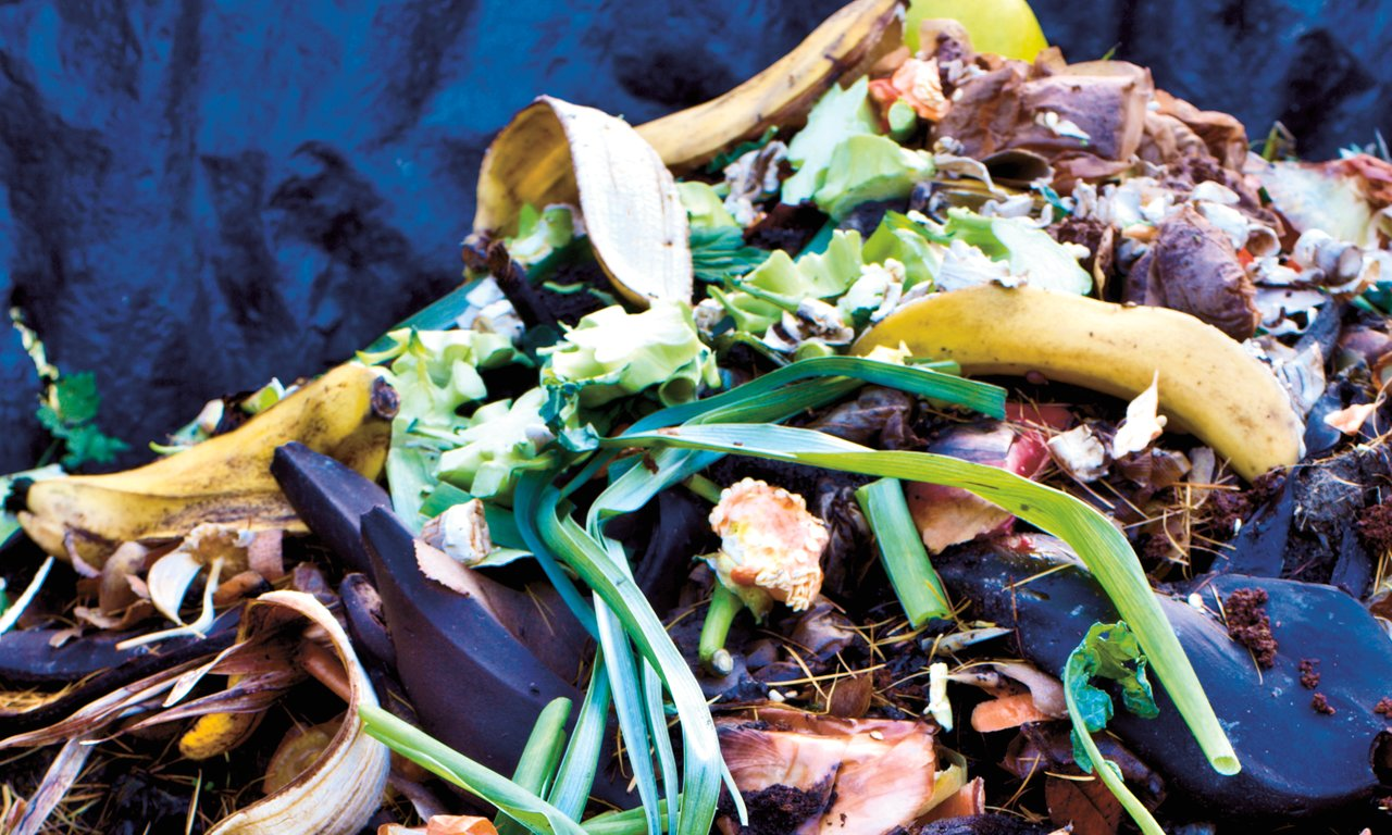 Domestic and garden compost heap.